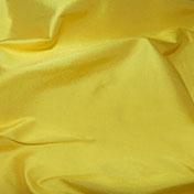 69X-Daffodill
