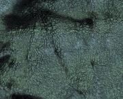 DH6405 Wild Pile Velvet / DH6504 Magnetite pigment